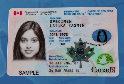Canada Driving License